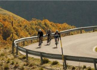 Les roues Campagnolo Zonda C17 conviennent à tous les parcours.